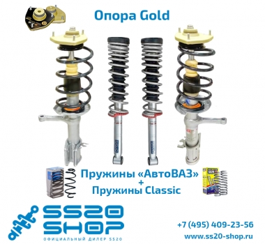 Комплект подвески в сборе SS20 с опорой Gold для ВАЗ 2170-2172 Приора